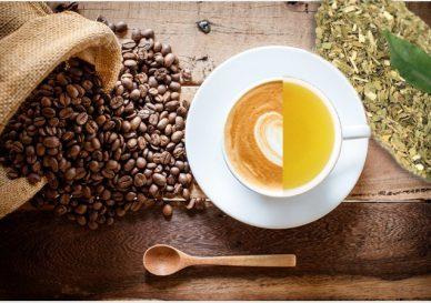 caj vs kava
